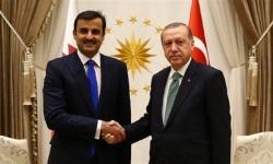 المعارضة القطرية: تميم يفتح خزائن البلاد لميليشيات أردوغان