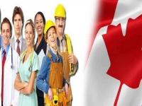 ارتفاع البطالة في كندا إلى 5.9% خلال نوفمبر