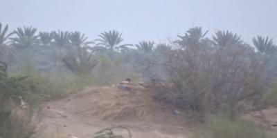 مقطع يوثق انتهاكات مليشيا الحوثي للهدنة الأممية (فيديو)