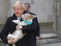 كلب رئيس الوزراء البريطاني يرافقه أثناء الإدلاء بصوته في الانتخابات