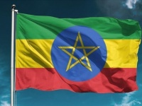 خلال 4 أشهر.. عائدات إثيوبيا من التصدير تبلغ 916 مليون دولار