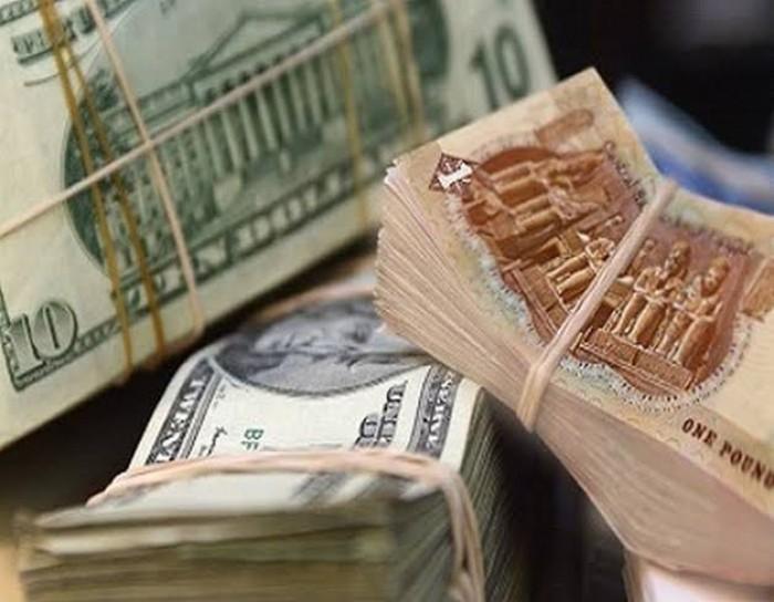 سعر صرف الدولار في مصر يستقر عند 16.08 جنيه