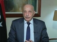 البرلمان الليبي يعلن الإعداد لدستور جديد وانتخابات عامة