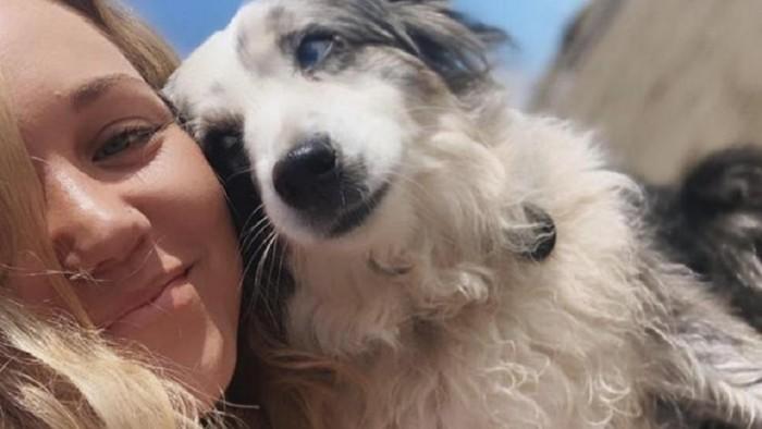 امرأة أمريكية تستأجر طائرة للعثور على كلبها
