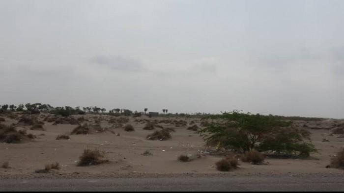 بالأسلحة المختلفة.. مليشيا الحوثي تقصف مواقع المشتركة بالجبلية