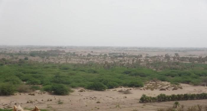 """هجوم حوثي من محورين على """"المشتركة"""" في الجبلية"""