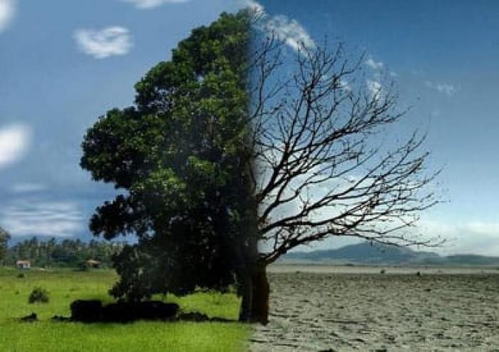 الصليب الأحمر: المناخ والعنف أزمة تحاصر منطقة القرن الإفريقي