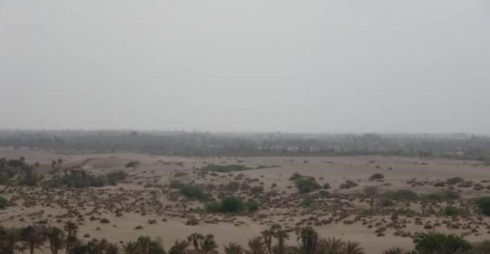 قصف بمختلف الأسلحة.. خروقات الحوثي عرض مستمر بالفازة