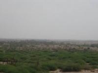 مليشيا الحوثي تجدد خروقاتها وتستهدف بعض المواقع بالجبلية