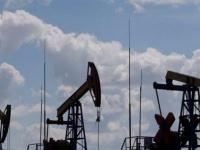 زيادة مخزونات النفط في أمريكا بـ1.6 مليون برميل