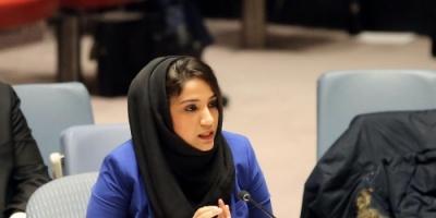 الإمارات تطالب باتخاذ خطوات لخفض التصعيد في سبيل حل أزمات المنطقة