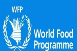 الأغذية العالمي: نخطط لتوسيع برنامج التغذية المدرسية ليشمل مليون طفل