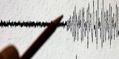 زلزال بقوة 5.3 درجة يضرب جزيرة نيوزيلندية