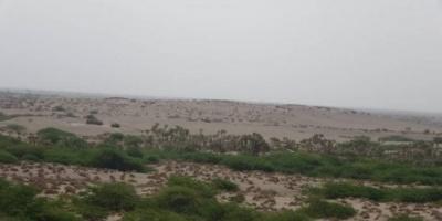 مليشيا الحوثي تجدد خروقاتها بقصف مواقع المشتركة بالجبلية