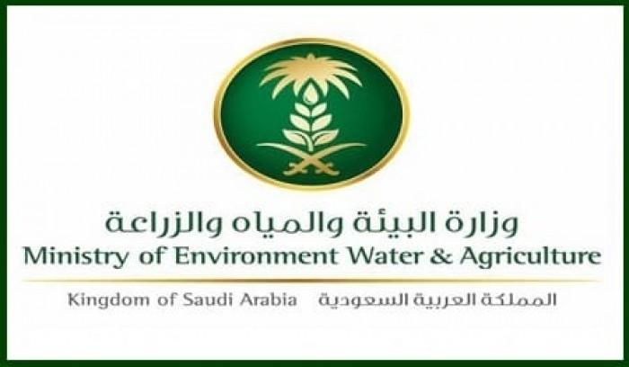 """وزارة البيئة السعودية: فيروس """"كورونا"""" الجديد حيواني المنشأ"""