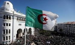 رسميًا.. الجزائر تكذب أردوغان: أرشيفنا بشأن فرنسا لا يخصكم