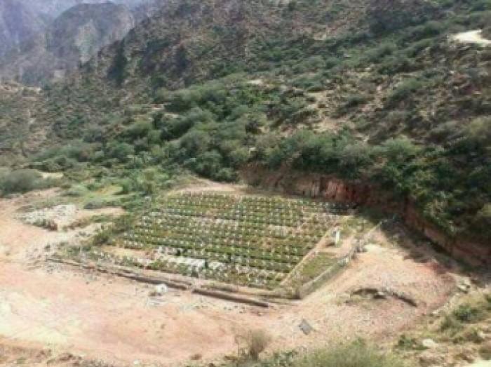 الشرق الأوسط: مليشيا الحوثي أسست 600 مقبرة لقتلاها