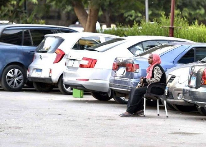 """للمرة الأولى.. قانون مصري لـ""""سايس السيارات"""""""