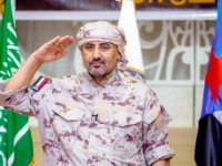 ستار الجنوب القوي يحمي الأمن القومي العربي (ملف)