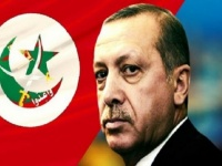 تسجيلات سرية تكشف تورط تركيا في دعم إخوان مصر
