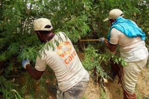 كير العالمية تقدم مساعدات للمزارعين في أبين ولحج