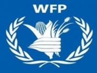 """""""الغذاء العالمي"""" : نوزع مساعدات شهرية إلى 12 مليون يمني"""