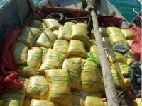 القوات المشتركة: إحباط تهريب متفجرات للحوثي عبر البحر