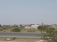 مليشيا الحوثي تقصف مزارع الدريهمي