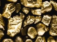 تتجاوز 3 آلاف طن.. الهند تكتشف حقول ذهب خام جديدة