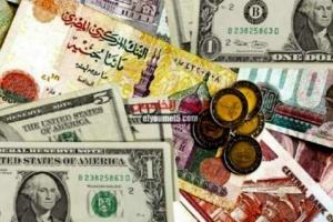 الدولار يستقر عند 15.5 جنيه في البنوك المصرية