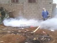 سجلت إصابات بالملاريا.. حملة رش ضبابي طارئة في الخداد