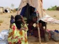 الدريهمي تئن من فظاعات مليشيا الحوثي