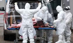 عاجل.. أمريكا تعلن تسجيل 50 حالة وفاة بكورونا والإصابات ترتفع إلى 2340