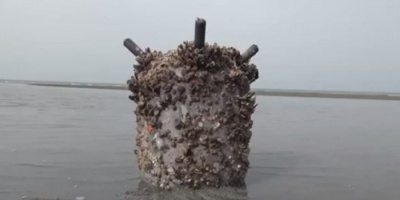 ألغام الحوثي.. موتٌ لم تنجُ منه البحار