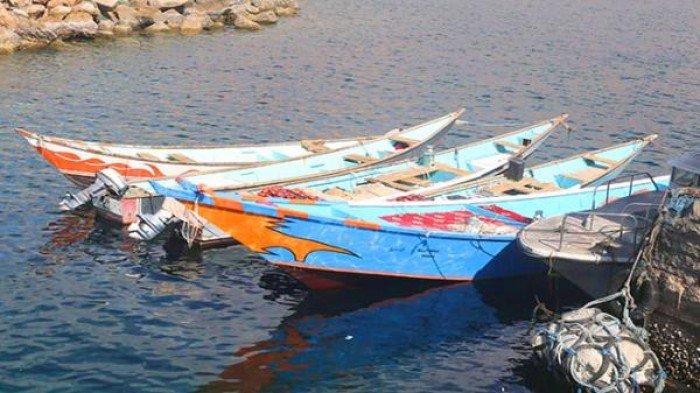 منح لـ ٢١٥ صيادا في حضرموت لشراء قوارب