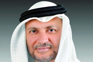 قرقاش: حكومة الإمارات مرنة وتعمل بتخطيط وجدية