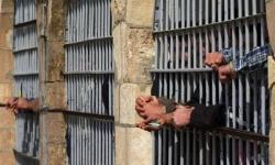 الكارثة المؤجلة.. مخاوف من موت جديد في سجون الحوثي