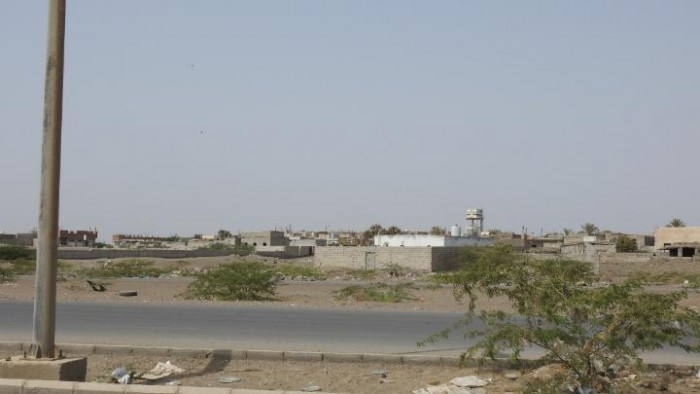 مدفعية الحوثي تقصف الدريهمي