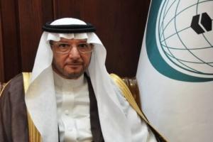"""""""التعاون الإسلامي"""" عن هدنة التحالف: مبادرة حميدة"""