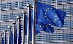 الاتحاد الأوروبي يطالب الشرعية والحوثيين بوقف العدائيات