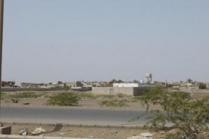 الإرهاب الحوثي يستهدف الدريهمي