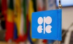 """بالإجماع.. دول """"أوبك+"""" توافق على خفض إنتاج النفط"""