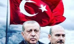 أردوغان يرفض استقالة وزير الداخلية ومدير مكتبه يمزقها