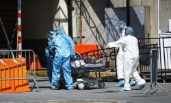 ألمانيا تسجل 170 وفاة و2082 إصابة جديدة بفيروس كورونا