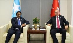 صحيفة فرنسية تكشف أطماع أردوغان لنهب ثروات الصومال