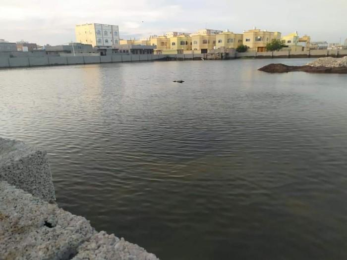 تجمعات المياه تُهدد الممدارة بالأوبئة (صور)