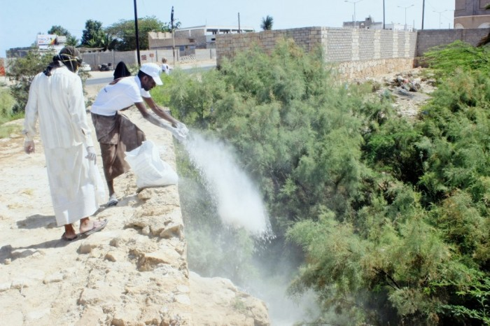 انتقالي غيل باوزير يُحاصر الأوبئة بحملة رش وقائي (صور)