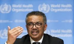 الصحة العالمية توافق على إجراء تحقيق دولي حول ظهور وتفشي كورونا
