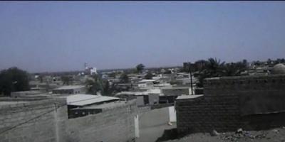 مليشيا الحوثي تُعيد على أهالي الدريهمي بالقذائف