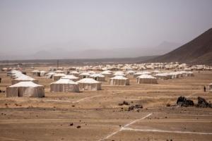 """""""الدولية للهجرة"""": كورونا تفشى مجتمعيا ونزوح 100 ألف مواطن"""
